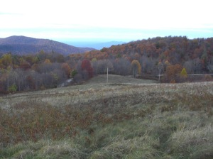 Near Max Patch, October, 2012